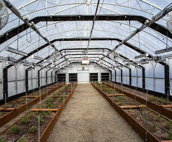 Finance a light dep greenhouse